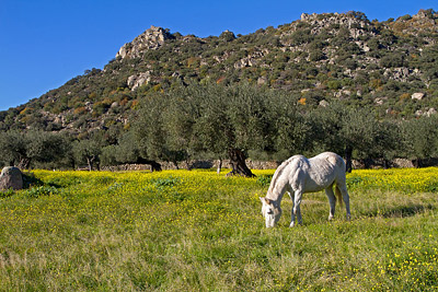 Extremadura, wandelen, wandeling